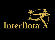 Interflora Secuoya Digital
